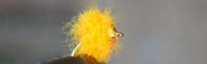 , October Fly: Beadhead Loop Egg