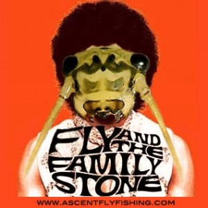 , Fly and the Family Stone