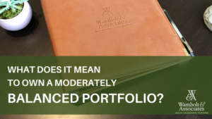 , What does it mean to own a moderately balanced portfolio?