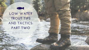 , Low Water Trout Tips and Tactics: Part Two