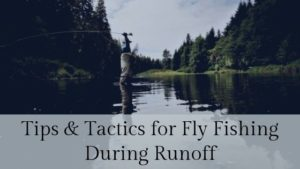 Tips & Tactics for Fly Fishing During Runoff